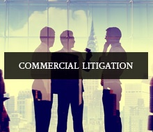 sector_litigation